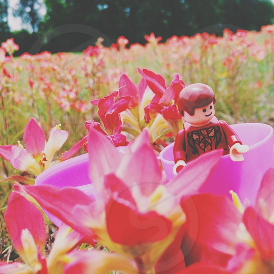 red man plastic toy on pink flower field  photo