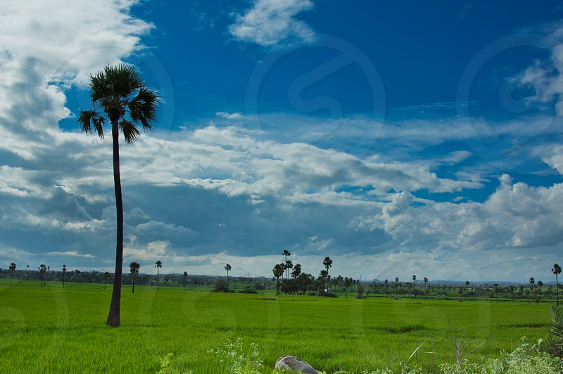 Country Side - India photo