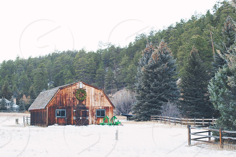 brown wooden house and green pine trees view photo