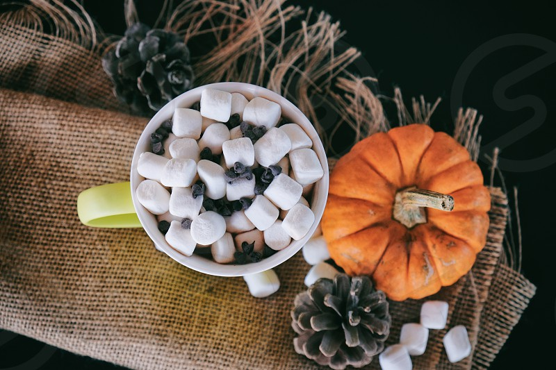 Hot cocoa for fall with marshmallows pumpkin and pinecone. photo
