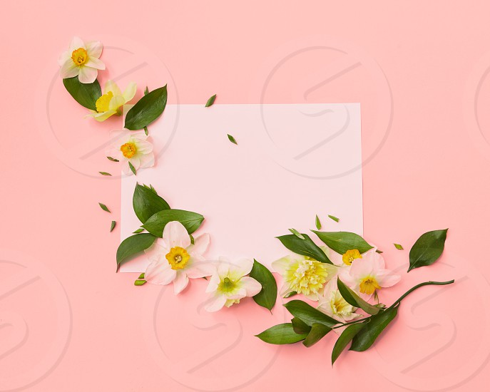 Top view of fresh flowers decorating blank copy space represented on a color background of the year 2019 Living Coral Pantone. Empty paper for noting ideas emotions. Wedding Women's Day. photo