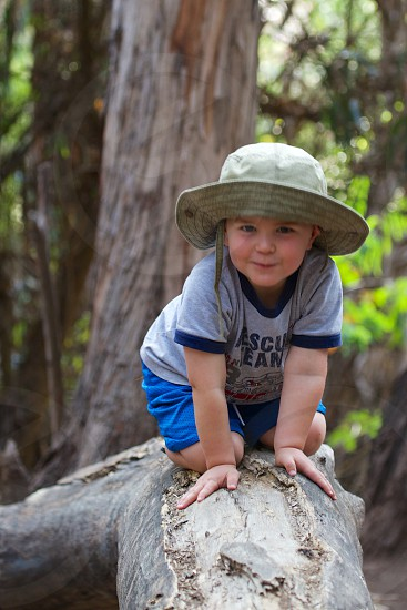 Three year old working up his courage to walk across a fallen tree. photo