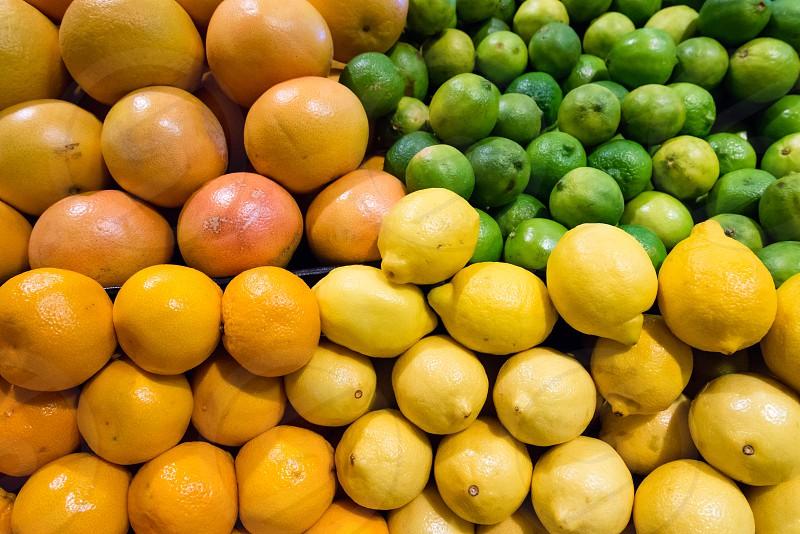 Citrus options of lemons limes oranges and grapefruits photo