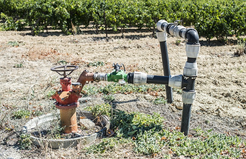 Agriculture faucet on vineyards photo