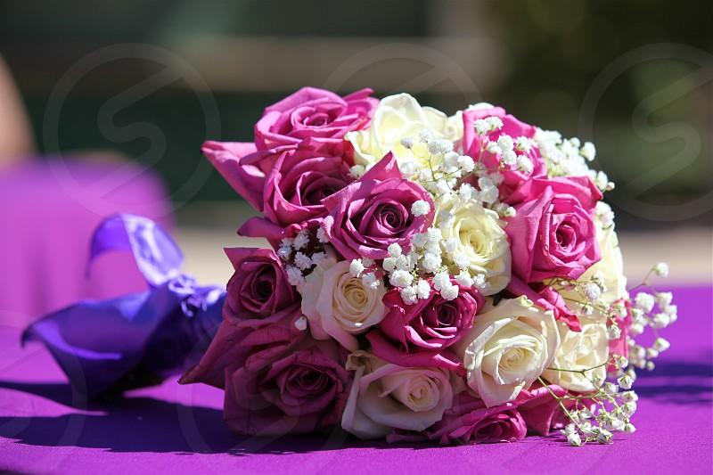 Bouquet at rest photo