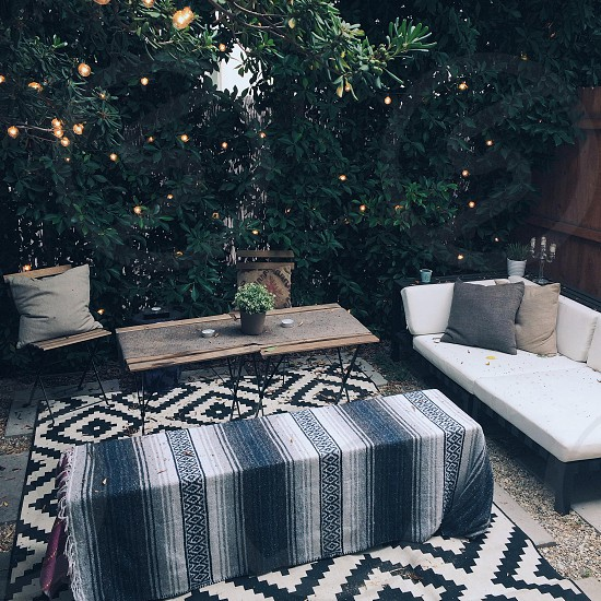 green leaf plants near 3-piece patio set and black and white padded 2-seat sofa photo