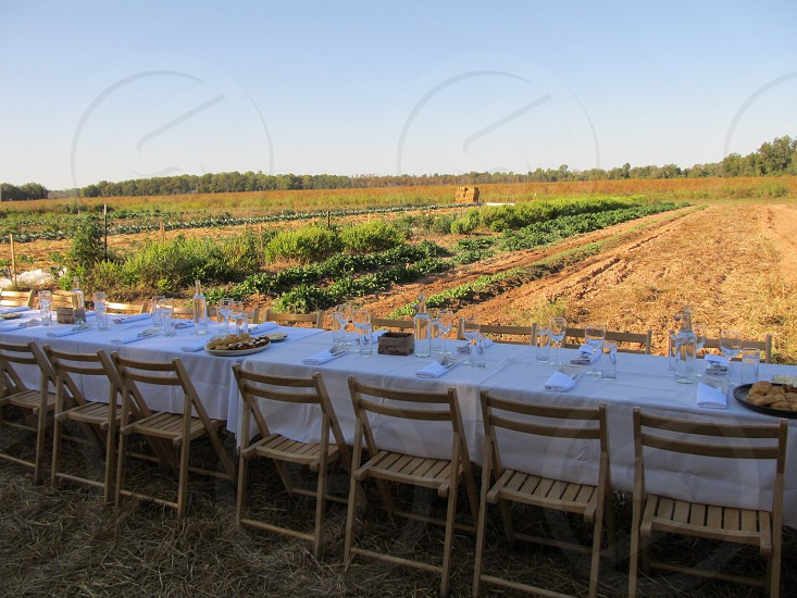 Long dining table in garden photo