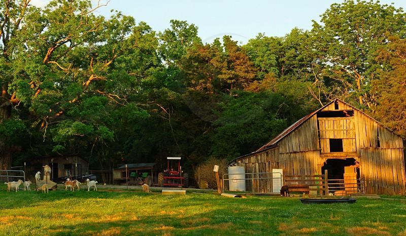 brown wooden barn photo