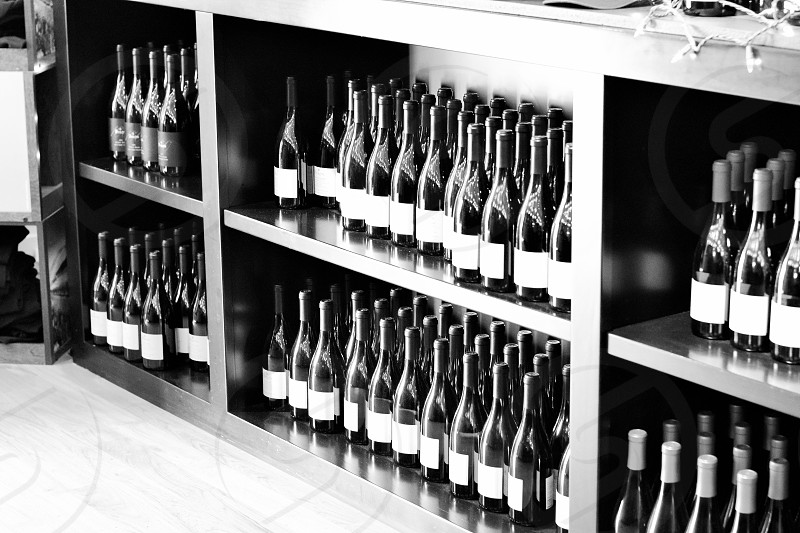 Wine bottle collection photo