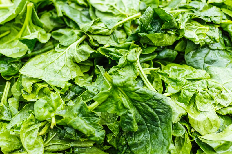 Fresh organic baby spinach at the market photo
