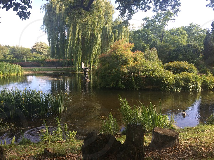 Regent's park photo