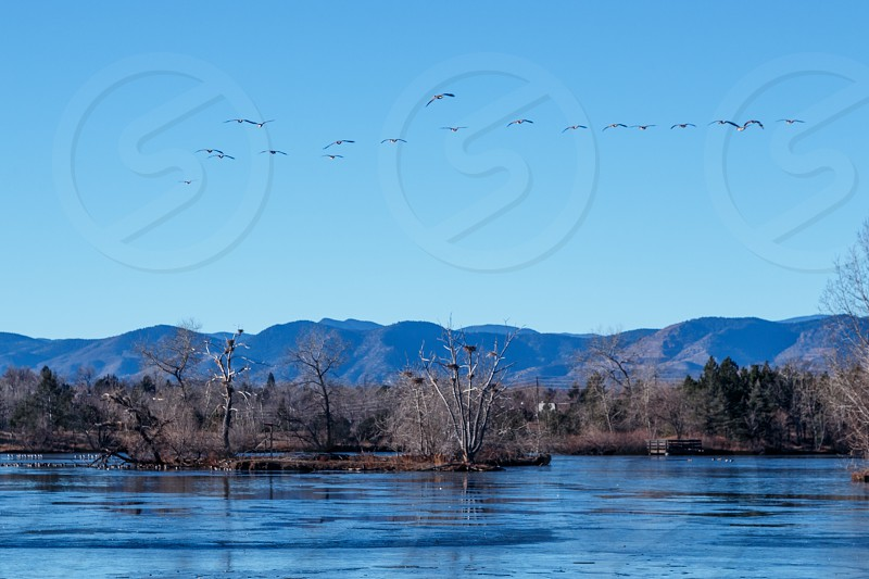 Belmar Park area of Lakewood in Jefferson County Colorado photo