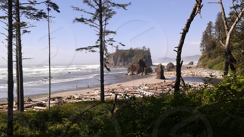 Ruby Beach WA state photo