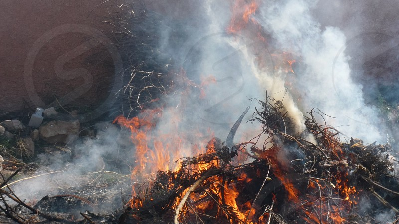Logs & branches being burnt outside -2 photo