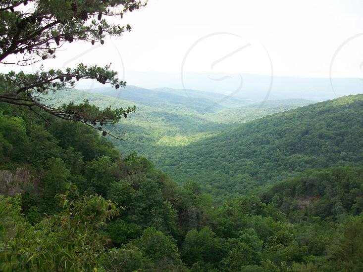 Shenandoah Valley View photo