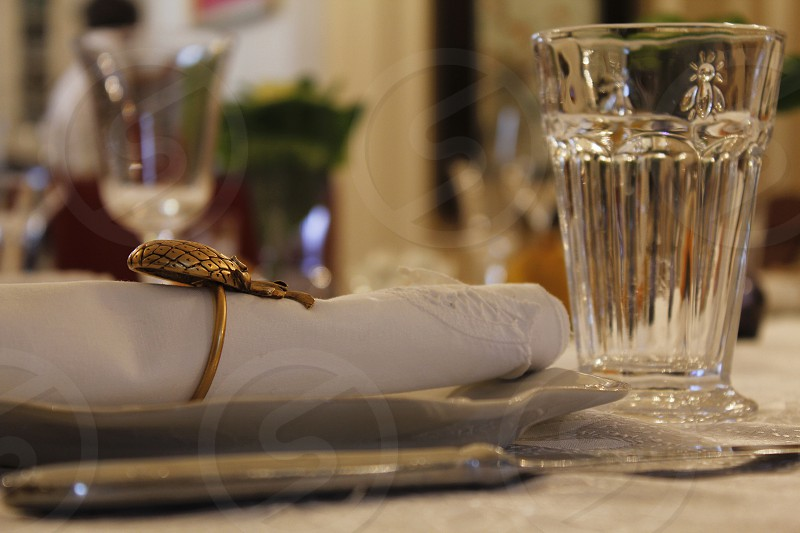 napkin ring with gold owl photo