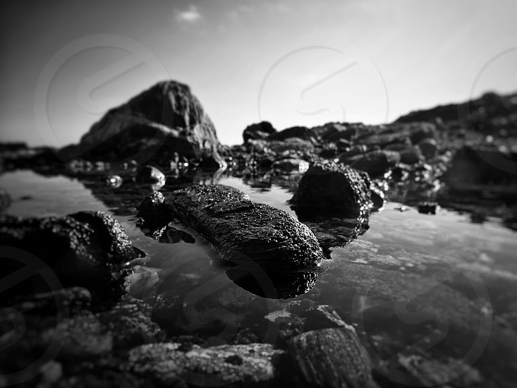 grayscale photography of rock on body of water photo