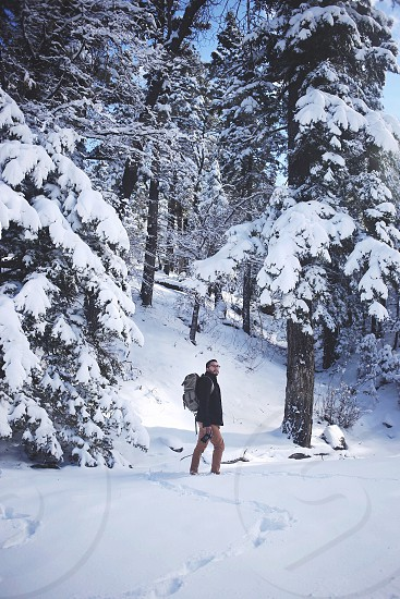 man wearing a grey backpack walking through snow on teh ground and in teh trees photo