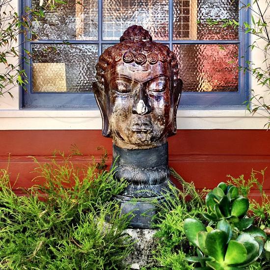 Window plants sculpture Buddha photo