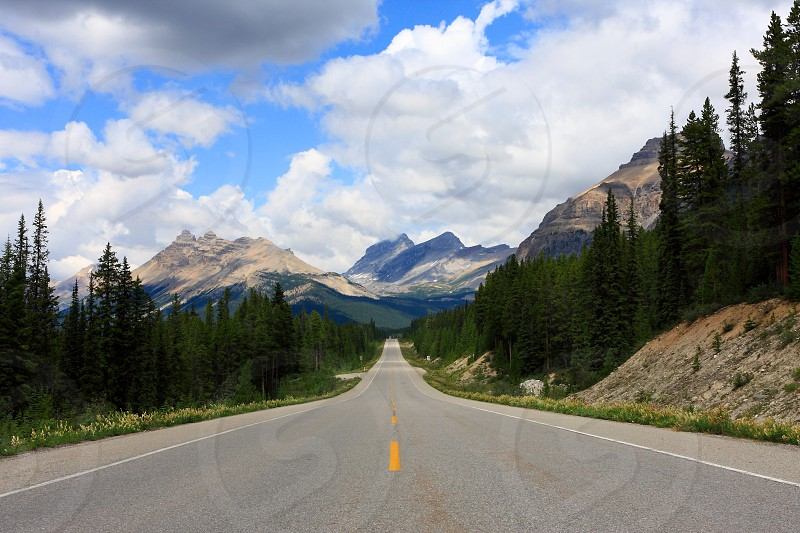 Road to Icefield Jasper National Park Canada photo