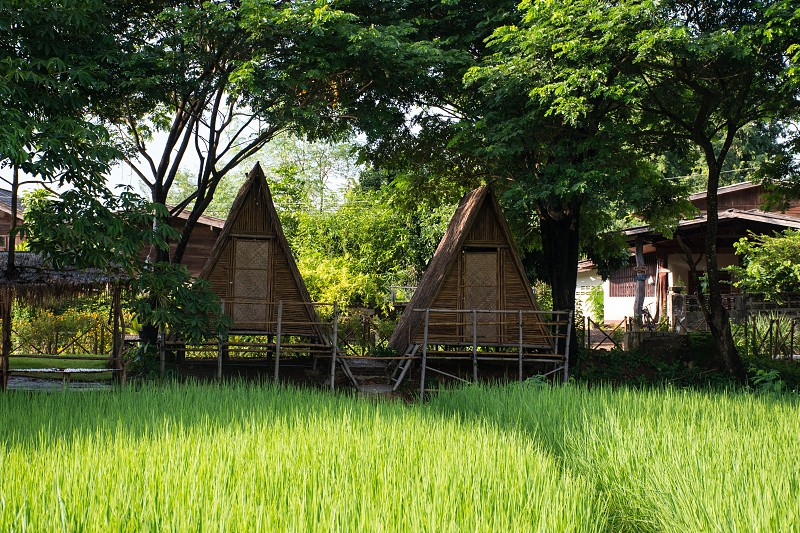 Bamboo houses for vacation. photo