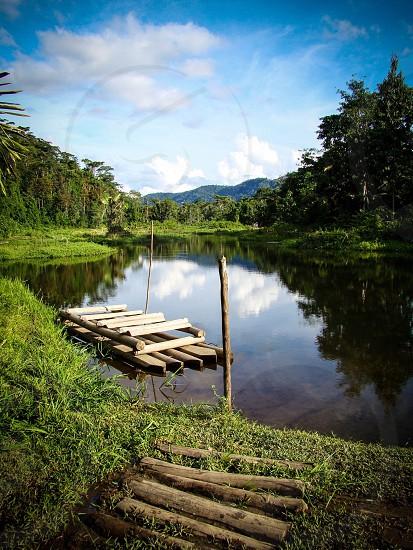 A small river off of the Amazon River Peru. photo