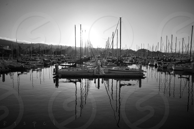 Port dock boats Monterey black and white  photo