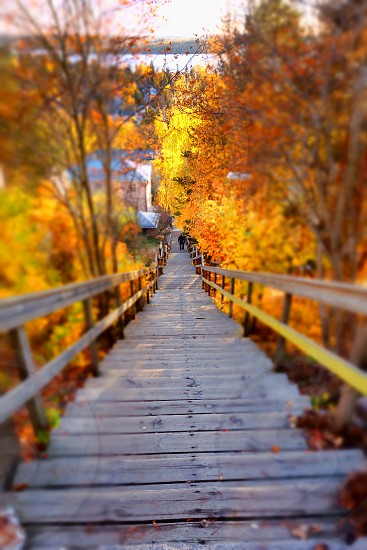 Autumnal stairs and passage downhill towards a lake in Tampere Finland. photo