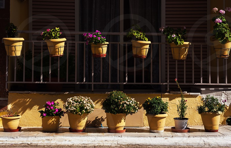 Exterior of a house details of decorative flowers in yellow vases.  photo