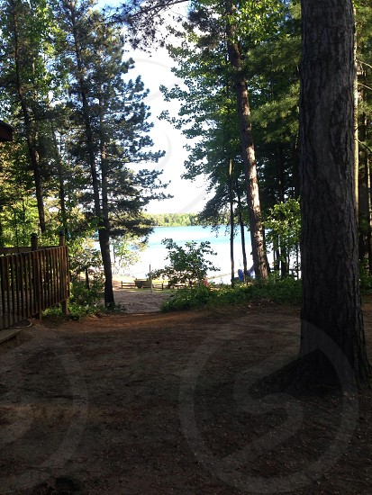 North woods of Rhinelander Wisconsin photo