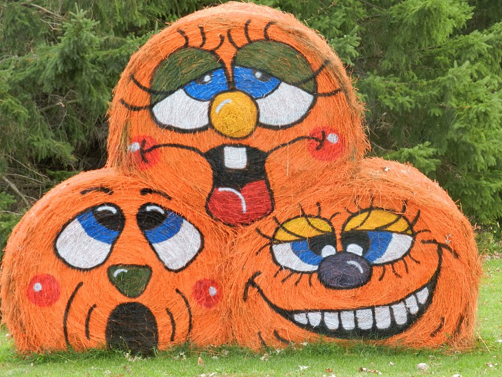 Decorated Hay bales                                photo