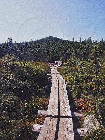 Wooden path to the summit. White Mountains New Hampshire.  photo