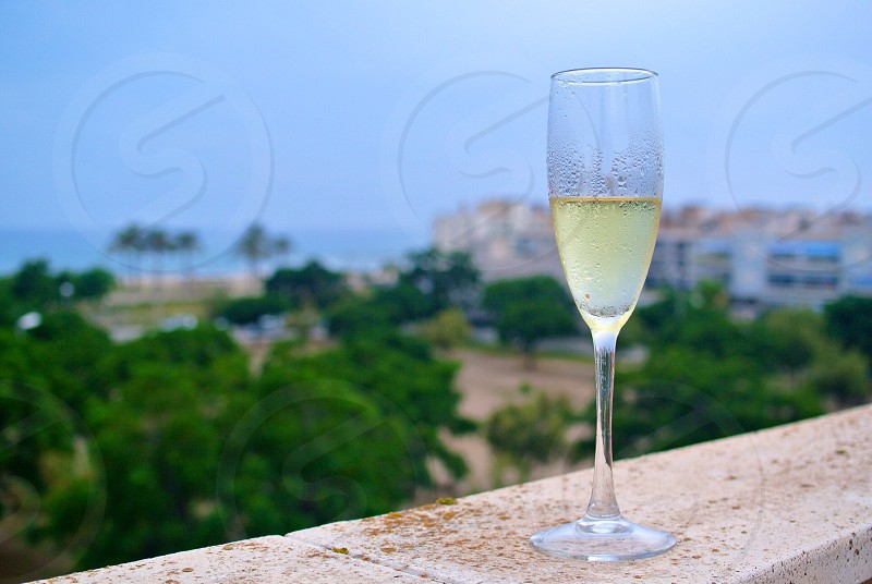 Drinking champagne near the sea photo