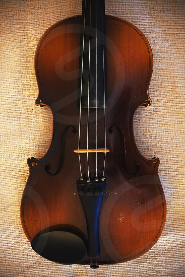 Details of an old and dusty violin from Czechoslovakia. photo
