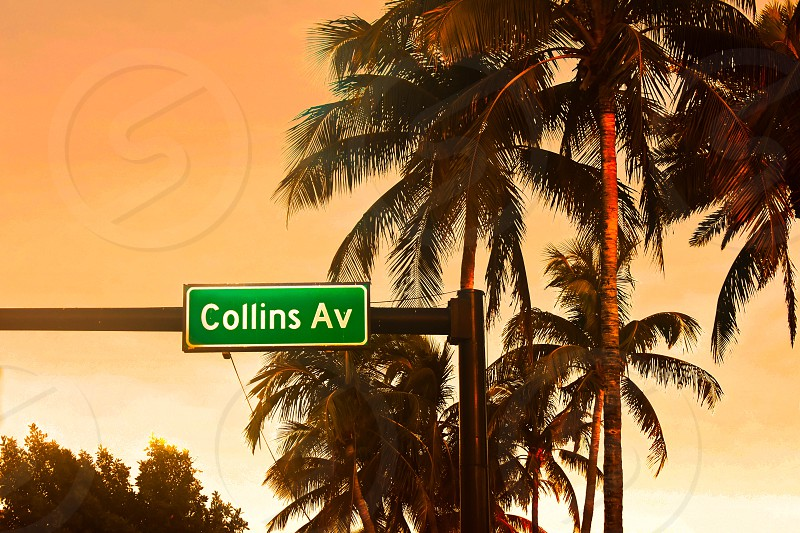 Miami Beach Florida. January 05 2018 Collins Ave. sign and palms trees on colorful sunset background. photo