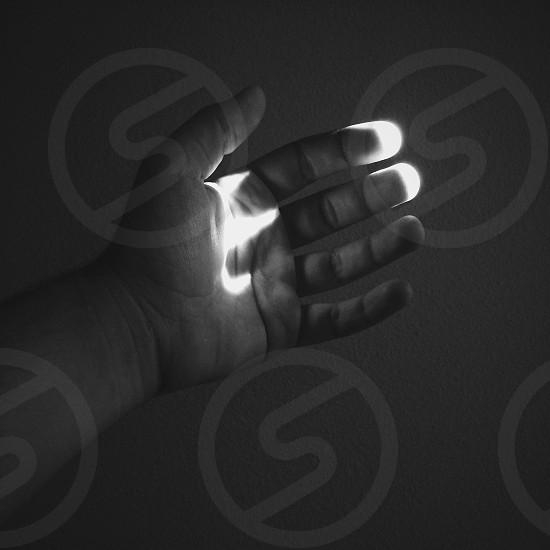 person's hand photo