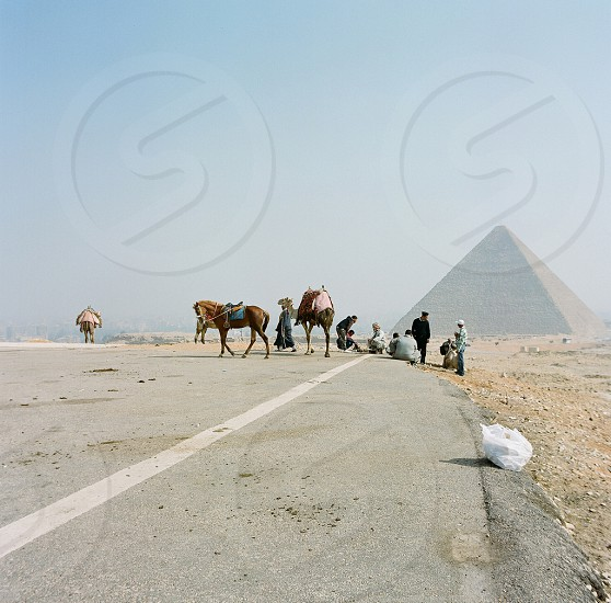 arabian people with camel and pyramid   photo
