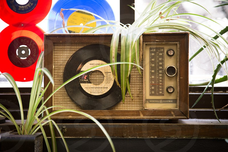 brown transistor radio green potted plant on wooden plank photo