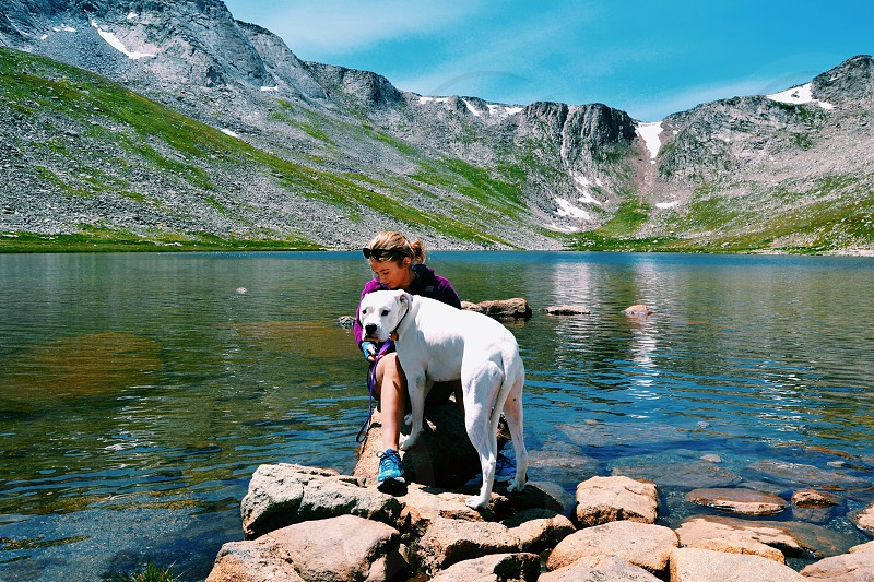 Mt.Evans and my pup photo