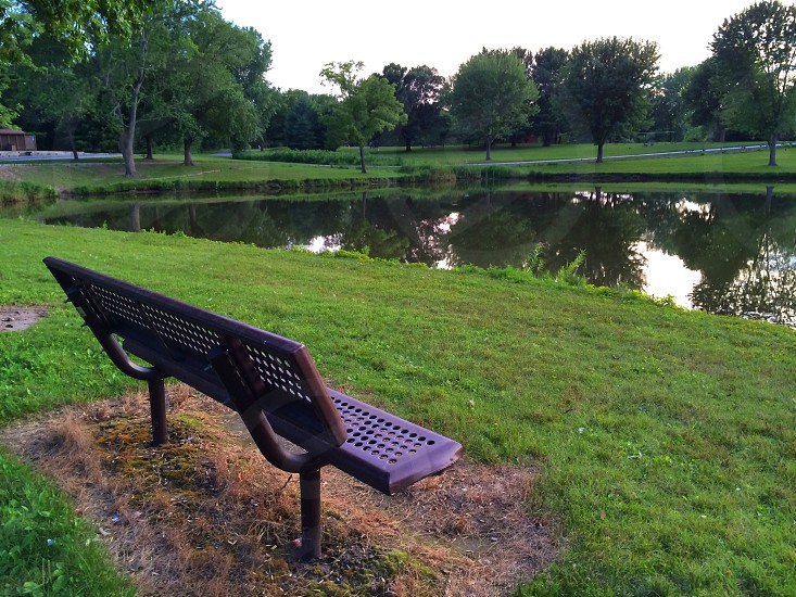 Meet me at the bench  photo