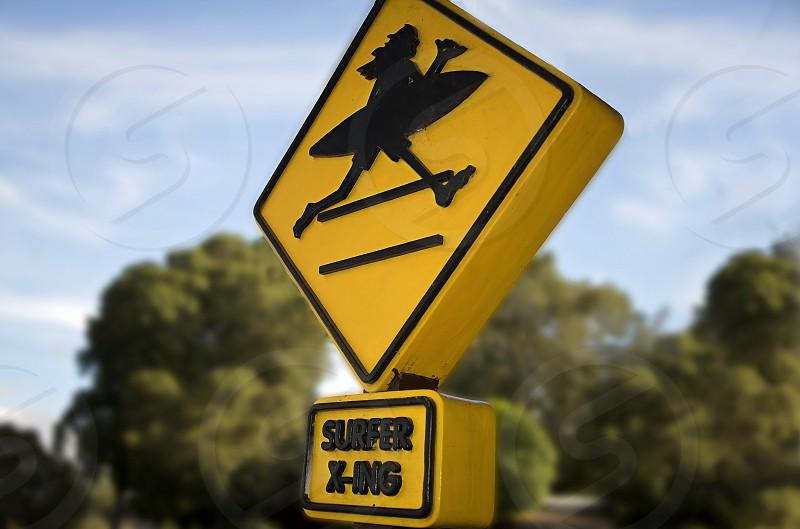 Surf Sign photo