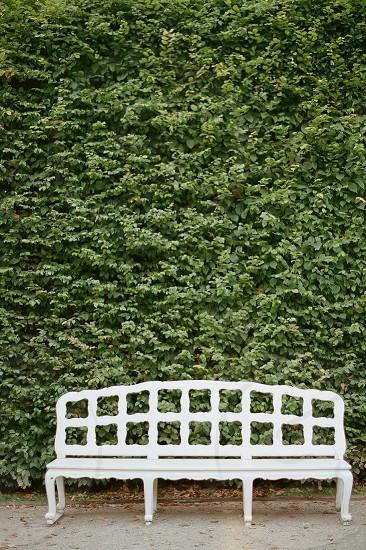Minimalism white bench gardens Germany film contax645 photo