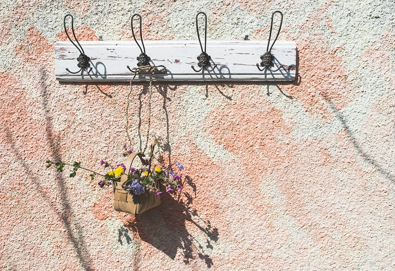 Flowers in the basket on hanger on a wall. Sunlight photo