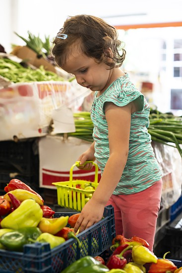 Kid shopping in vegetable market. Child collect peppers in basket. photo