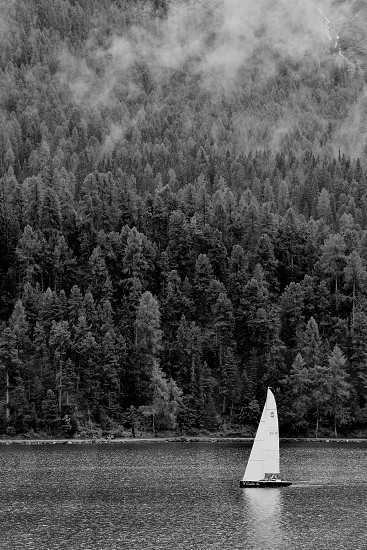 Sailboats Sailing sail boats lakes nautical relax hobby landscape outdoors scenic nature nature lovers natural black and white Switzerland water Sail Away photo