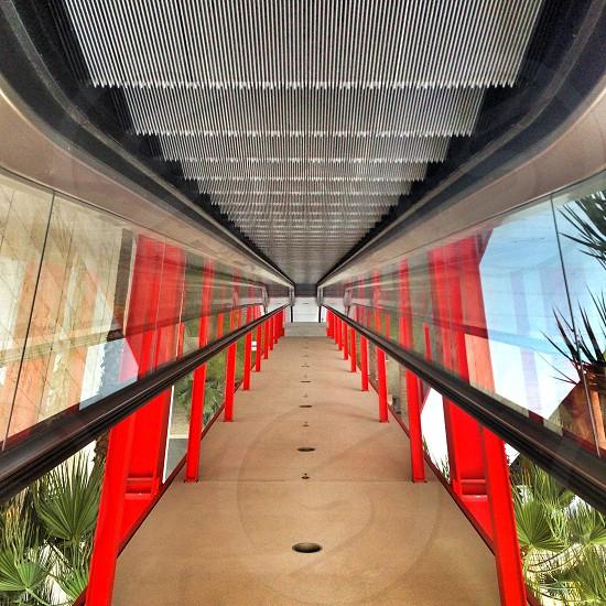 path to a glass bridge  photo