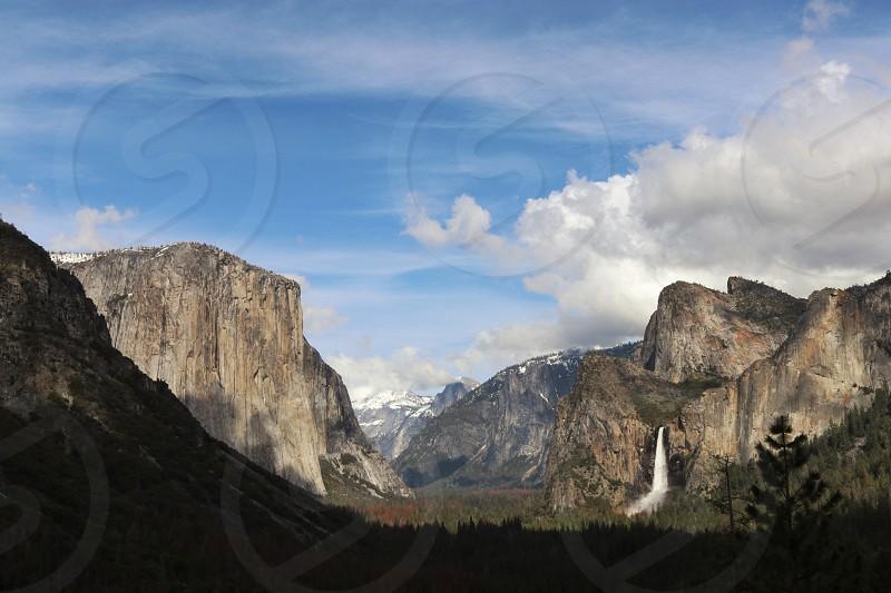 Nature Yosemite woods photo