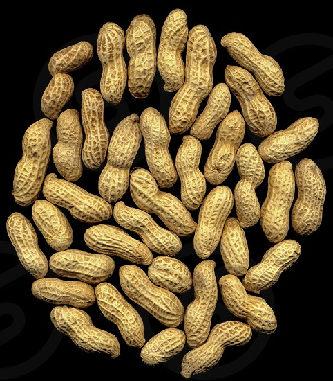 peanuts on black background photo