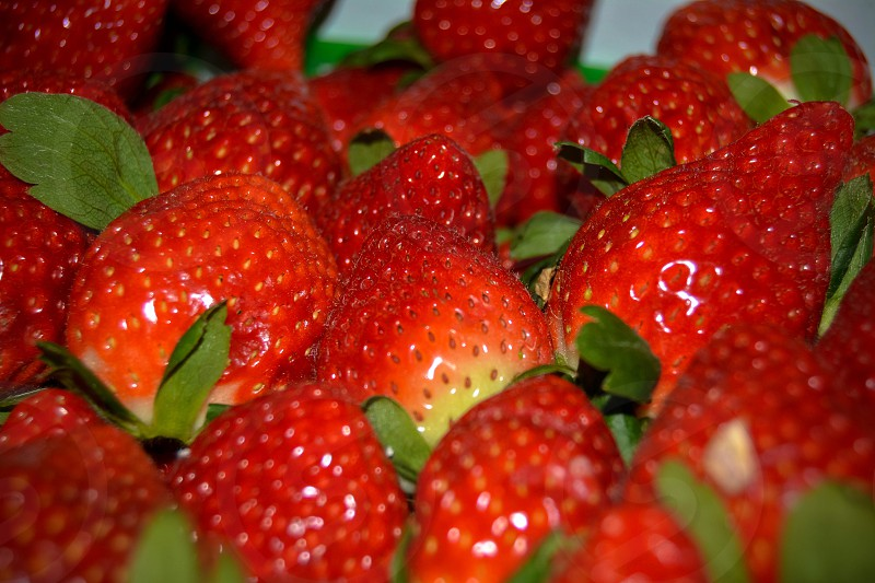 Strawberry strawberryfestival fruit red food photo
