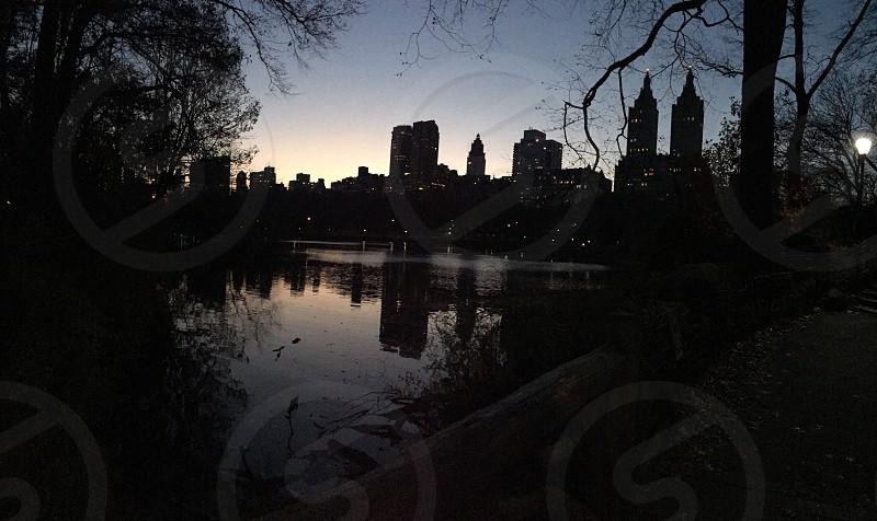 Central ParkNYC Nov 2014 photo